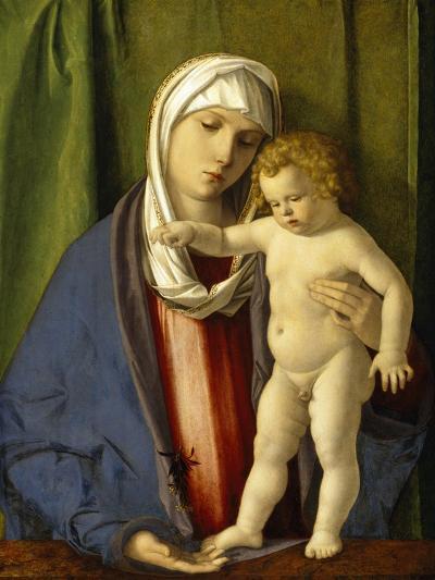 Virgin and Child, C.1488-90-Giovanni Bellini-Giclee Print