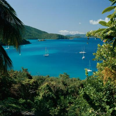 Virgin Islands National Park St. Johns Us Virgin Islands--Photographic Print