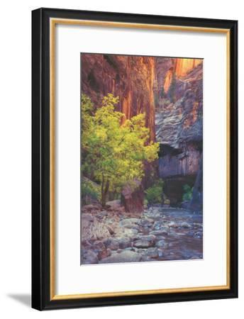 Virgin Narrows Nook, Zion-Vincent James-Framed Photographic Print