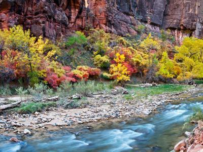 Virgin River and Rock Face at Big Bend, Zion National Park, Springdale, Utah, USA