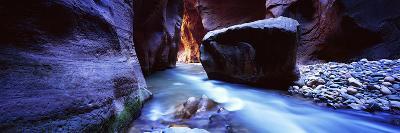 Virgin River at Zion National Park, Utah, USA--Photographic Print