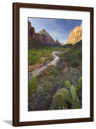 Virgin River Valley, Zion National Park, Utah, Usa-Rainer Mirau-Framed Photographic Print