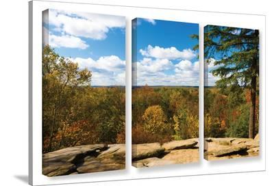 Virginia Kendall, 3 Piece Gallery-Wrapped Canvas Set-Cody York-Gallery Wrapped Canvas Set