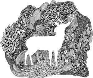 Wandering Deer by Virginia Kraljevic
