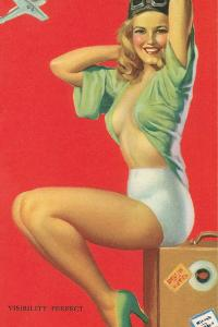 Visibility Perfect, Blonde Pilot