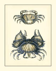 Antique Blue Crabs I by Vision Studio