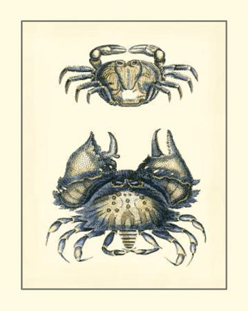 Antique Blue Crabs I