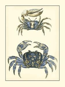 Antique Blue Crabs II by Vision Studio