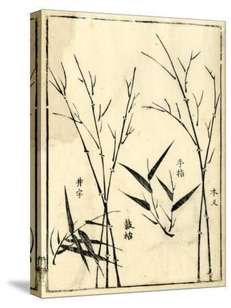 Bamboo Woodblock II