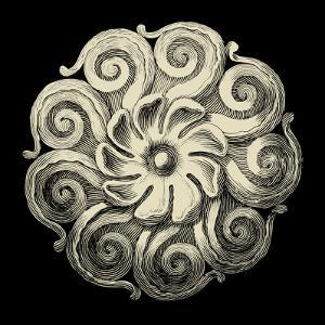Black and Tan Rosette I by Vision Studio