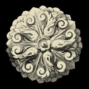 Black and Tan Rosette II by Vision Studio