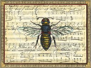 Bumblebee Harmony II by Vision Studio