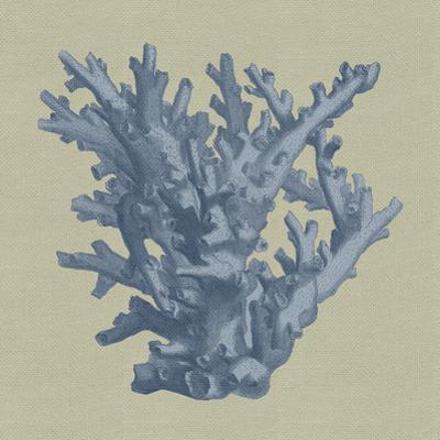 Chambray Coral I by Vision Studio