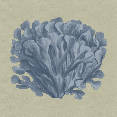 Chambray Coral III by Vision Studio