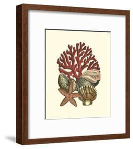 Coral Medley I by Vision Studio