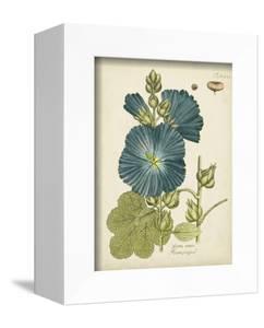 Eloquent Botanical IV by Vision Studio