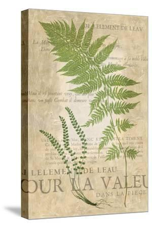 Fern Folio II