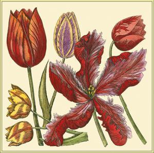 Floral Spray V by Vision Studio