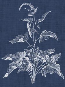Foliage Chintz II by Vision Studio