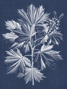 Foliage Chintz V by Vision Studio