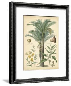 Fruitful Palm I by Vision Studio
