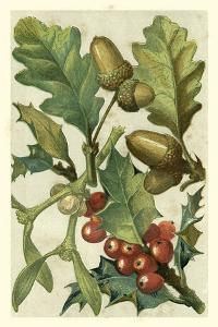 Fruits & Foliage II by Vision Studio