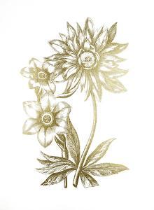Gold Foil Floral Chintz I by Vision Studio