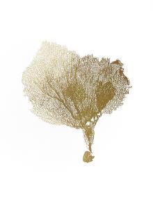 Gold Foil Sea Fan IV by Vision Studio