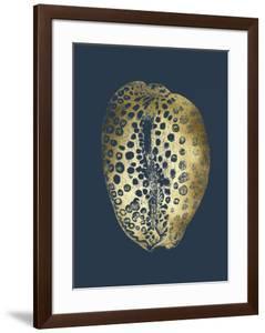 Gold Foil Shell II on Cobalt by Vision Studio