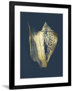 Gold Foil Shell III on Cobalt by Vision Studio