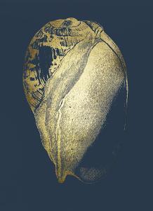 Gold Foil Shell IV on Cobalt by Vision Studio