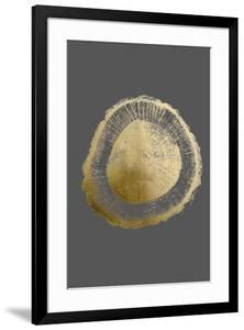 Gold Foil Tree Ring II on Dark Grey by Vision Studio