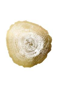 Gold Foil Tree Ring IV by Vision Studio