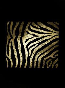 Gold Foil Zebra Pattern on Black by Vision Studio