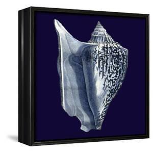 Indigo Shells I by Vision Studio