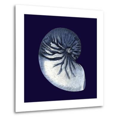 Indigo Shells VII