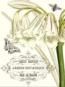 Jardin Botanique I by Vision Studio