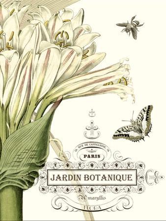 Jardin Botanique II by Vision Studio