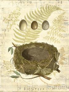 Melodic Nest and Eggs I by Vision Studio