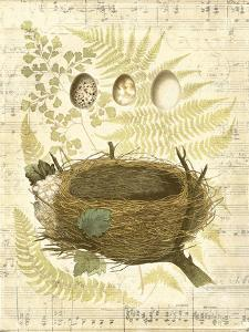 Melodic Nest and Eggs II by Vision Studio