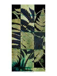 Midnight Ferns I by Vision Studio