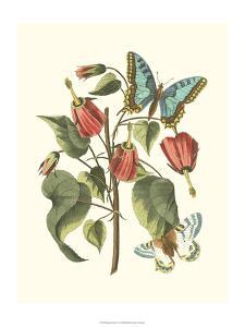 Midsummer Floral I by Vision Studio