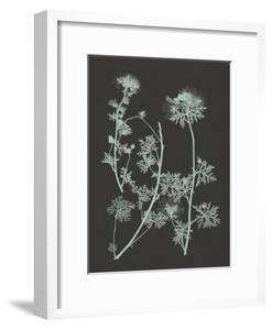 Mint & Charcoal Nature Study IV by Vision Studio