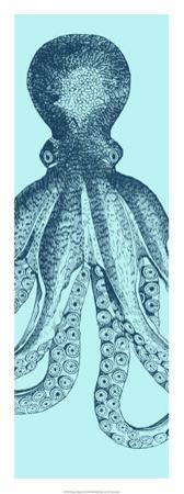 Octopus Triptych II