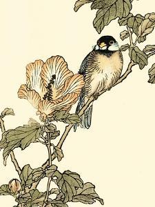 Oriental Bird on Branch I by Vision Studio