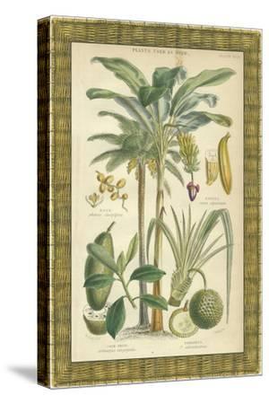 Palms in Bamboo II