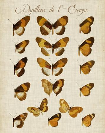 Papillons de L'Europe I