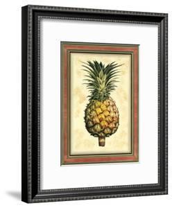Pineapple Splendor I by Vision Studio