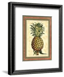 Pineapple Splendor II by Vision Studio