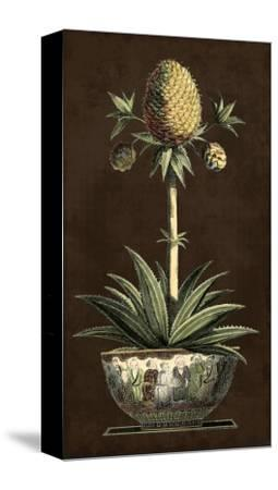 Potted Pineapple I